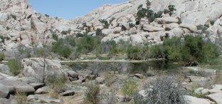 Barker Dam Pond